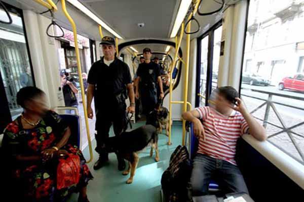 Cani controllori/ufficio stampa Comune
